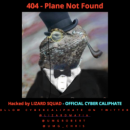 Lizard Squad Malaysia Airlines Banner
