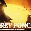 Secret-ponchos