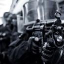 swatting-swat