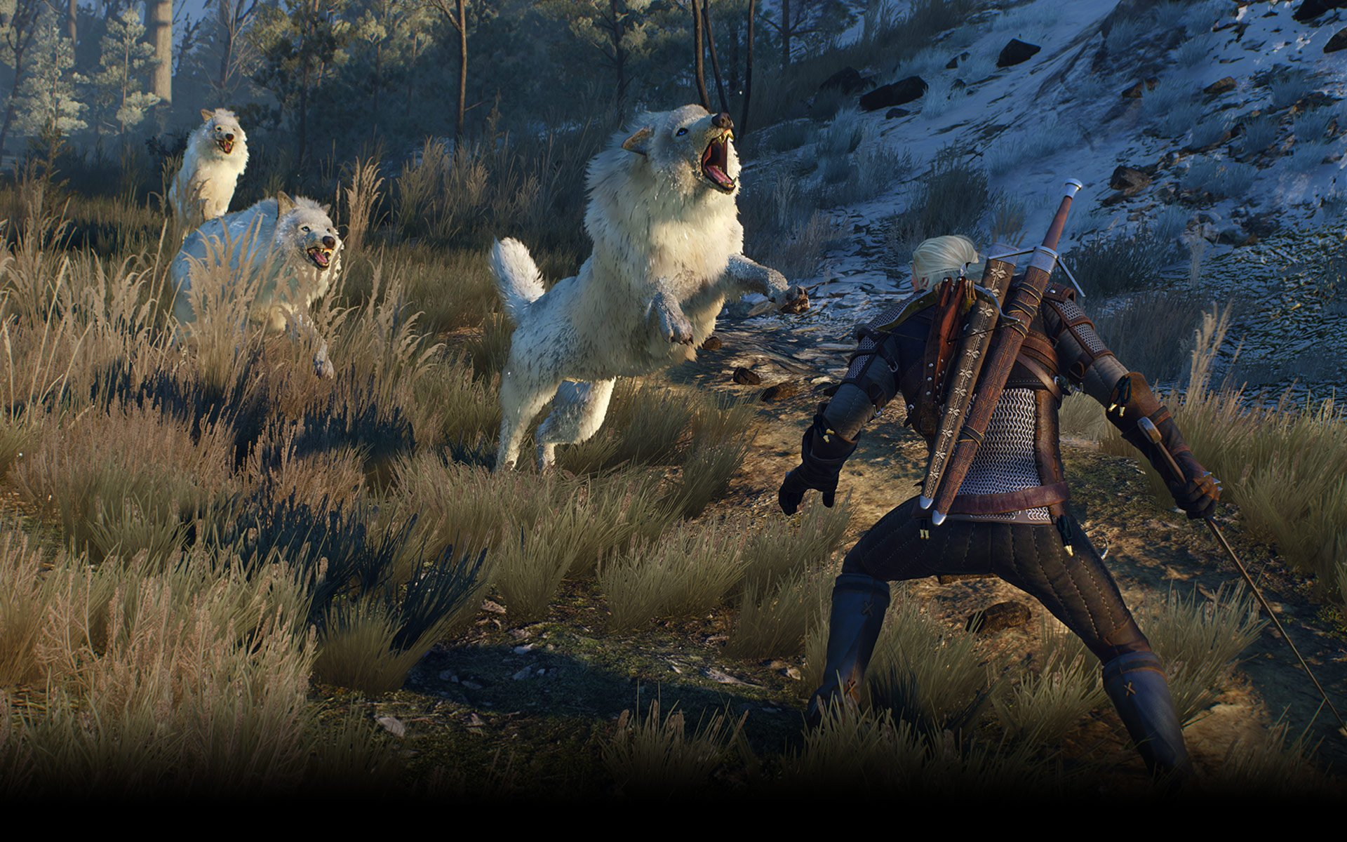 The witcher 3_05