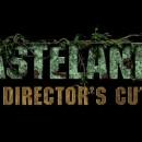 wasteland 2 directors cut cover