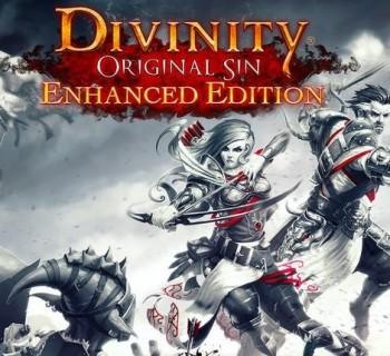 Divinity Original Sin Enhanced Edition RPG