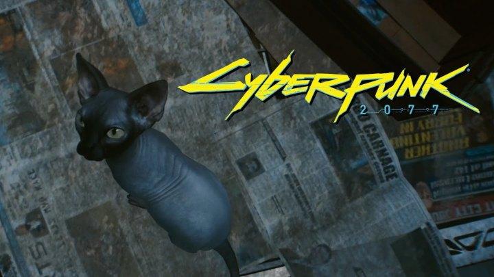 Cybperpunk 2077 multiplayer