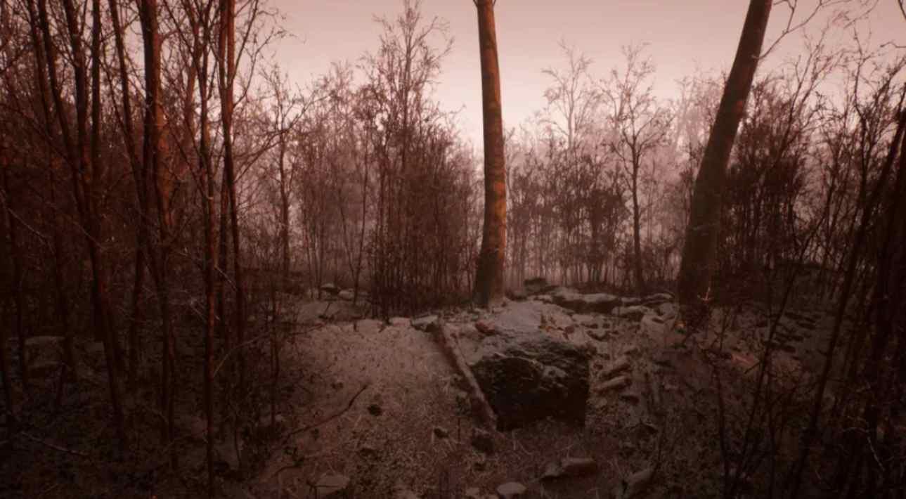 Abandoned bosco