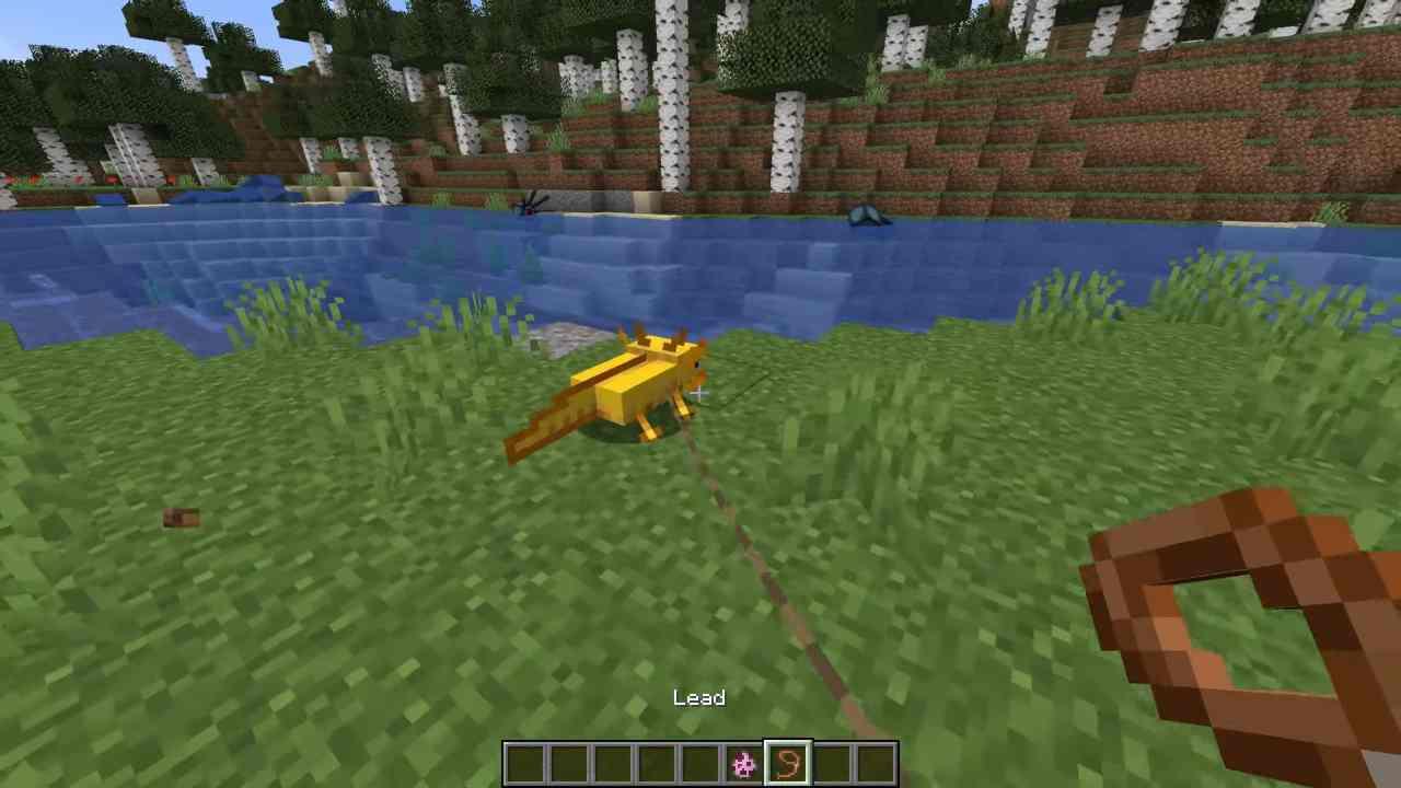 Minecraft diventa gioco vietato ai minori: ecco il motivo