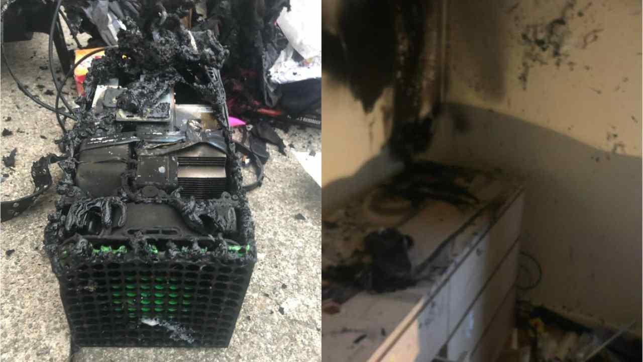 Xbox Series X esplode Stava per uccidere il mio gatto! - FOTO